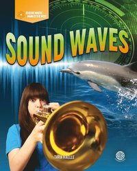 Sound Waves (e-bok)