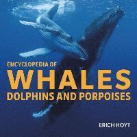 Encyclopedia of Whales, Dolphins and Porpoises (inbunden)