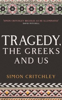 Tragedy, the Greeks and Us (e-bok)