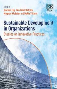 Sustainable Development in Organizations (inbunden)