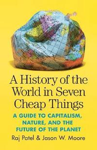 A History of the World in Seven Cheap Things (häftad)