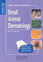 Small Animal Dermatology (häftad)