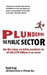 Plundering the Public Sector (häftad)