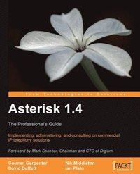 Asterisk 1 4 av Colman Carpenter, David Duffett, Ian Plain, Nik Middleton  (E-bok)