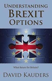 Understanding Brexit Options (häftad)