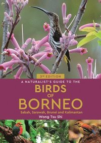 A Naturalist's Guide to the Birds of Borneo (3rd edition) (häftad)