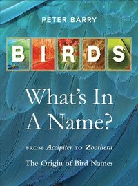 Birds: What's In A Name? (inbunden)