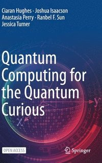 Quantum Computing for the Quantum Curious (inbunden)