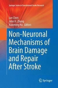 Non-Neuronal Mechanisms of Brain Damage and Repair After Stroke (häftad)