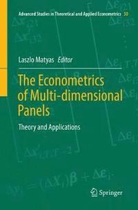 The Econometrics of Multi-dimensional Panels (häftad)