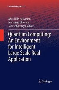 Quantum Computing:An Environment for Intelligent Large Scale Real Application (häftad)