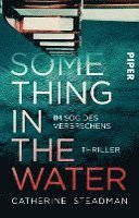 Something in the Water - Im Sog des Verbrechens (häftad)