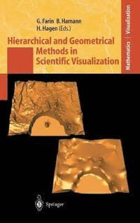 Hierarchical and Geometrical Methods in Scientific Visualization (inbunden)