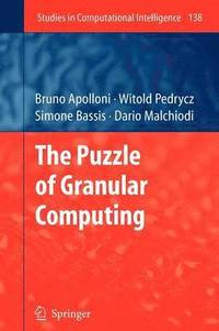 The Puzzle of Granular Computing (häftad)