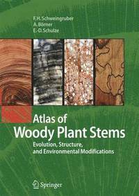 atlas of stem anatomy in herbs shrubs and trees schulze ernst detlef schweingruber fritz hans brner annett
