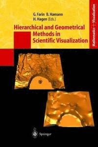 Hierarchical and Geometrical Methods in Scientific Visualization (häftad)