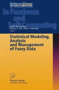 Statistical Modeling, Analysis and Management of Fuzzy Data (inbunden)