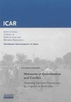 Networks of Coordination and Conflict (häftad)