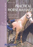 Practical Horse Massage (häftad)