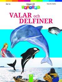 Valar och delfiner