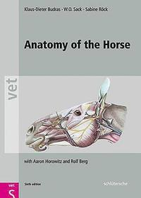 Anatomy of the Horse (inbunden)