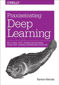 Praxiseinstieg Deep Learning (e-bok)