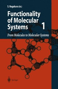 From Molecules to Molecular Systems (e-bok)