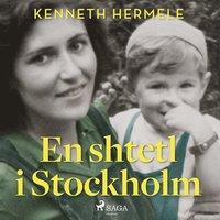 En shtetl i Stockholm (ljudbok)