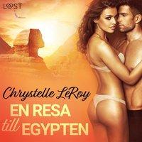 Rsfoodservice.se En resa till Egypten - erotisk novell Image
