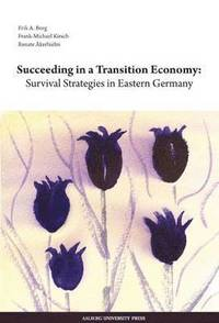 Succeeding in a Transition Economy (häftad)