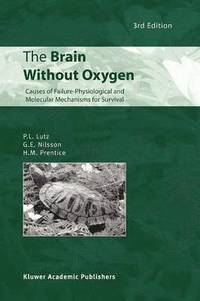 The Brain Without Oxygen (häftad)