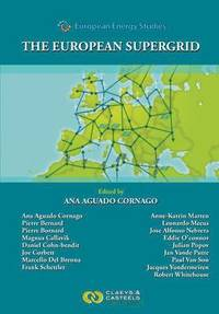 European Energy Studies, Volume VII: The European Supergrid (inbunden)
