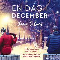 Radiodeltauno.it En dag i december Image