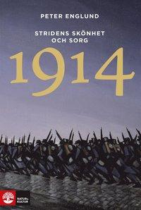 1914 Stridens skönhet och sorg : första världskrigets första år i 106 korta kapitel