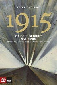 1915 Stridens skönhet och sorg : första världskrigets andra år i 108 korta kapitel