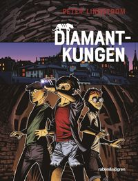 Diamantkungen (e-bok)