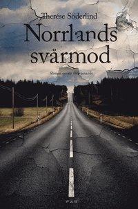 Norrlands svårmod : Roman om ett försvinnande (e-bok)