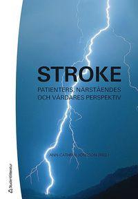 Rsfoodservice.se Stroke : patienters, närståendes och vårdares perspektiv Image