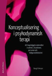 Skopia.it Konceptualisering i psykodynamisk terapi : att begripliggöra människor i rummet, situationen, personen och bakgrundshistorien Image