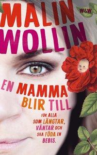 En mamma blir till : för alla som längtar, väntar och ska föda en bebis