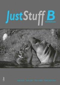 Just Stuff B Workbook