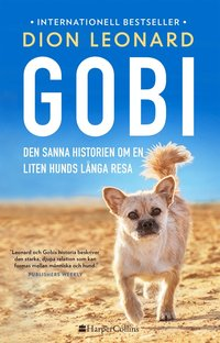 Skopia.it Gobi. Den sanna historien om en liten hunds långa resa Image