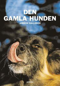 Den gamla hunden : om den äldre hundens fysiska och psykiska välbefinnande (kartonnage)