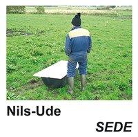Radiodeltauno.it SEDE Image