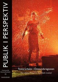 Skopia.it Publik i perspektiv : teaterarbete i Öresundsregionen Image