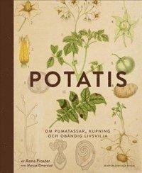 Rsfoodservice.se Potatis Image