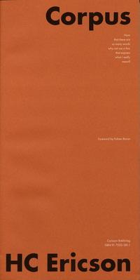 Radiodeltauno.it Corpus : lyrics and letterforms Image