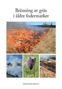 Skopia.it Bränning av gräs i äldre fodermarker Image