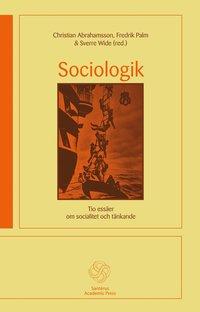 Radiodeltauno.it Sociologik : tio essäer om socialitet och tänkande Image