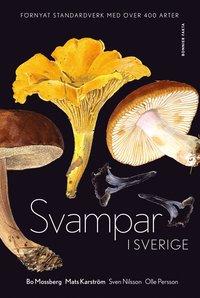 Skopia.it Svampar i Sverige Image